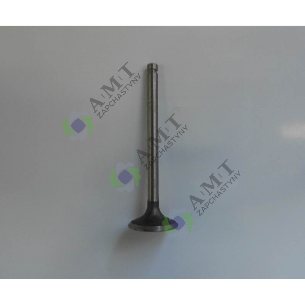 Клапан выпускной CF4B40T/CF3B24