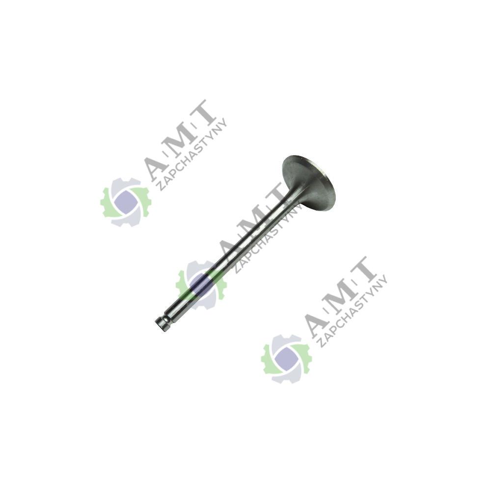 Клапан впускной 42.01.102 DL190-12